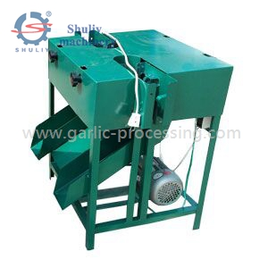 Garlic root removing machine